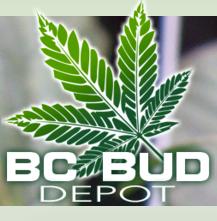 bcbud