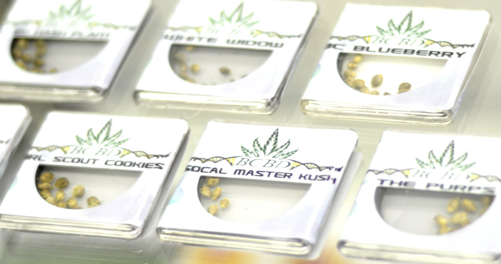Marijuana seeds for sale at Cannabend